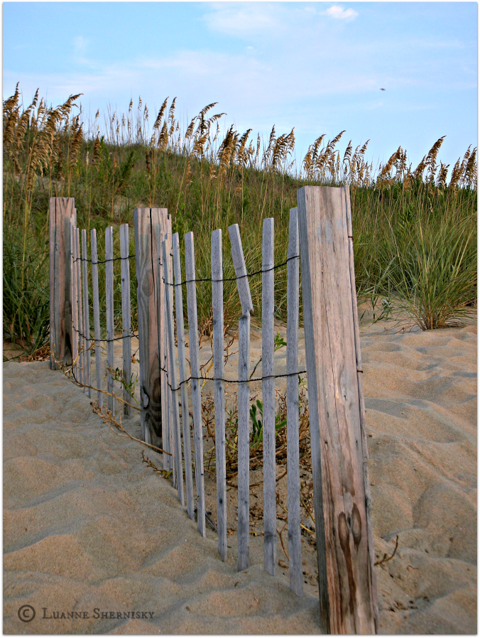 Beach Fence.png