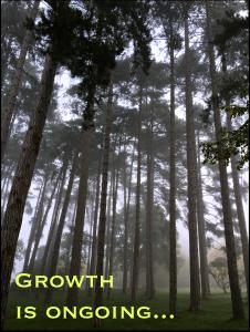 GrowthREV