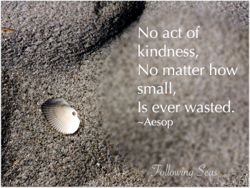 Tiny white shell on sand with the quote