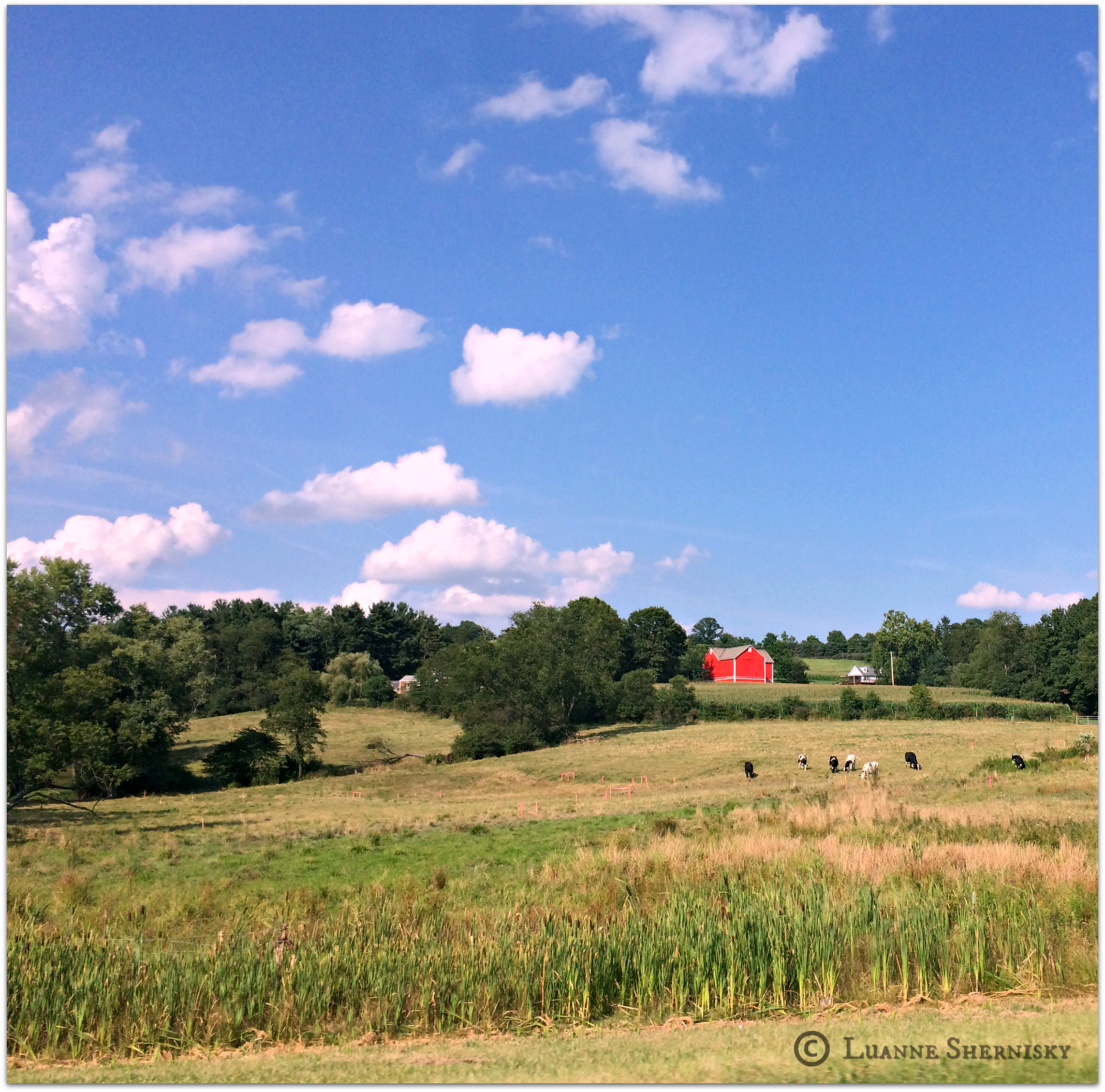 Landscape of red barn set against green background and blue sky