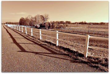 Fence along the road