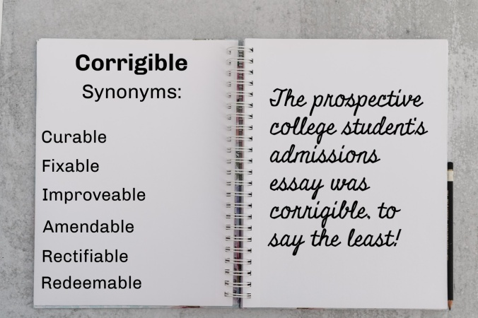 Notebook with synonyms & usage for corrigible
