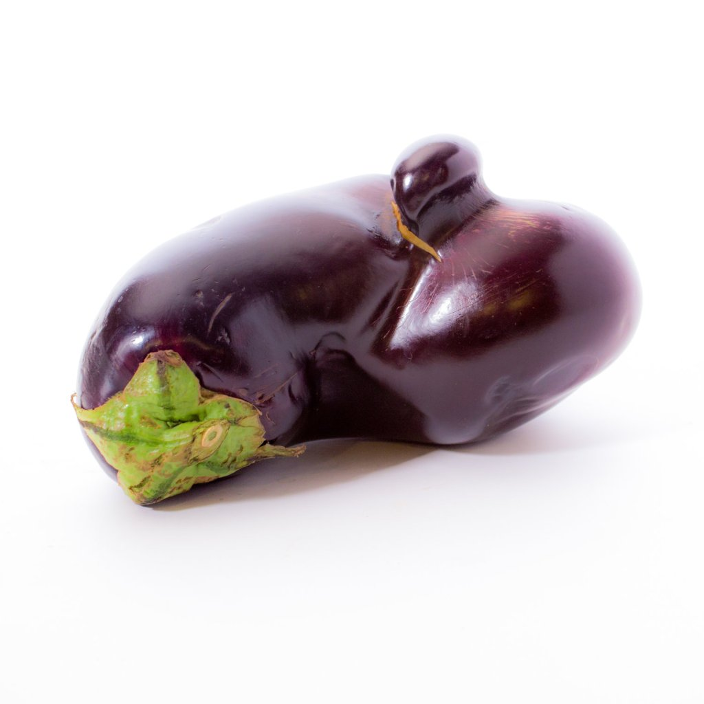 misshapen eggplant that is discarded due to irregular shape and appearance